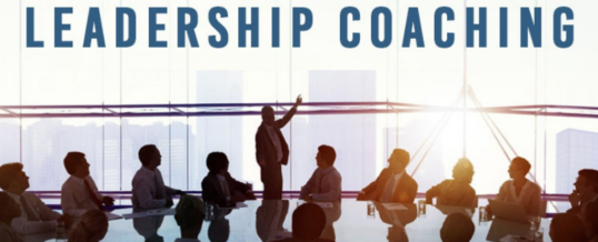 Why We All Need Executive Leadership Coaching